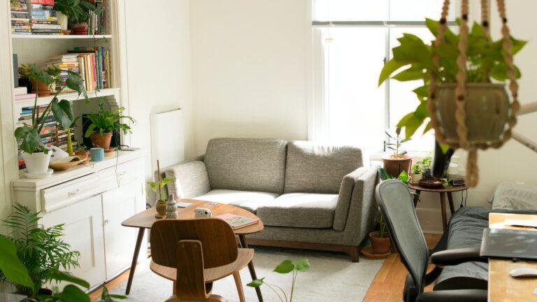 Living room with plenty of plants