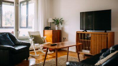 Mid-century style furniture
