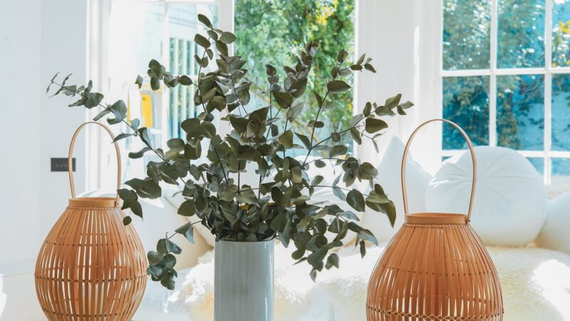 A large plant and a pair of baskets used as a focal point
